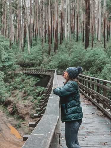 Ultimate Wandering Preset Pack photo review